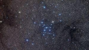 Skorpionin tähtikuviota