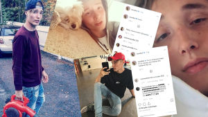 Ett collage av bilder ur Isac Elliots Intagramflöde. Isac med lövblåsare, med liten söt hund, med leva på huvudet och på golvet i en dansstudio.