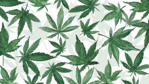 En målad bild av cannabislöv.