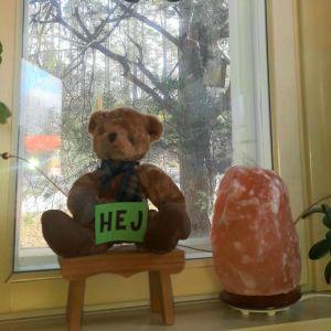 En nallebjörn och en uggla i fönstret i Karis.