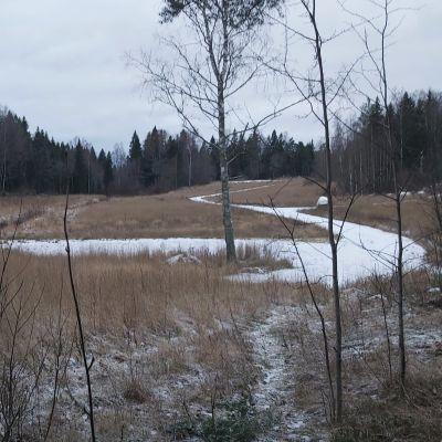 Åkermark på vintern med gångar i mitten.