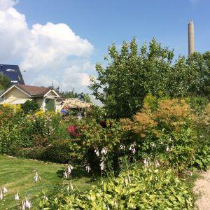 Brunakärrs koloniträdgård
