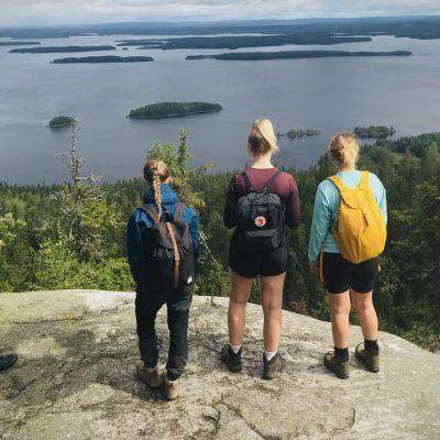 Neljä nuorta retkeilijää katsomassa Suomen kansallismaisemaa Kolin kansallispuistossa, vaaran huipulla.