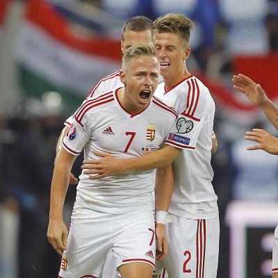 Balasz Dzsudzsak firar mål för Ungern 2014.