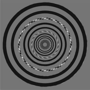 Akiyoshi Kitaokan illuusio osin peitettynä