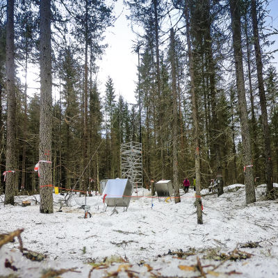 Turvemetsän päästöjen mittaussa.sasema Ränskälänkorpi Asikkala.