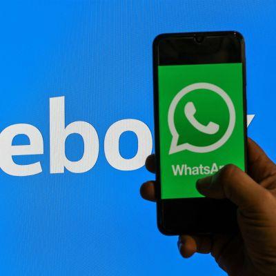 Kuvassa käsi pitelee kännykkää, jonka ruudulla nälyy Whatsapp-palvelun vihreä logo. Taustalla on Facebookin valkoinen teksti sinisellä pohjalla.