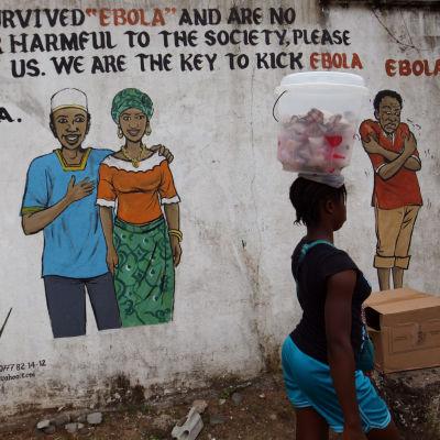 """Väggmålning i Liberia efter att landet förklarades ebolafritt första gången. """"Vi överlevde Ebola och är inte längre skadliga för samhället, acceptera oss. Vi är nyckeln till att ge Ebola sparken från Liberia."""