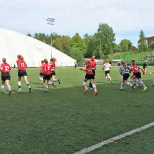 stadi cup i juni 2015