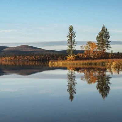 Järvimaisema Urho Kekkosen kansallispuistossa