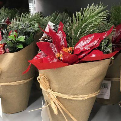 Joulutähti kaupan hyllyllä