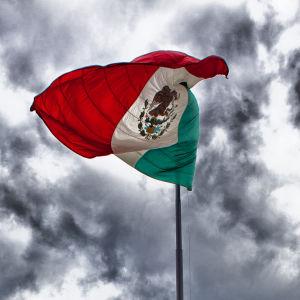 Mexikos flagga.