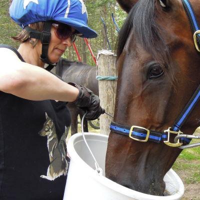 Kristiina Koivula och hästen Arnold Halm.