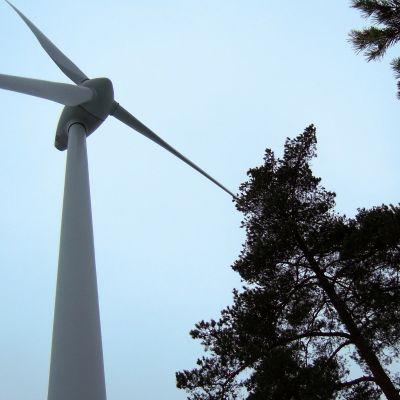 Tuulivoimala Hangossa.
