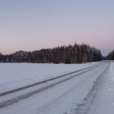 Snöig rak väg löper mellan snötäckta åkrar, vinter, skymning, längre borta syns skog.