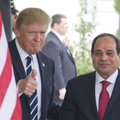 Donald Trump välkomnar Egyptens president Abdul Fatah al-Sisi i Washington.