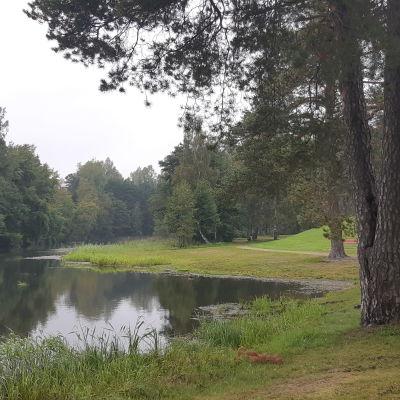 En bild från en grön park som ligger vid en vik. vatten och träd syns på bilden