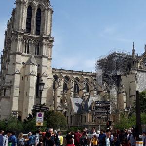 Bild av Notre-Dame