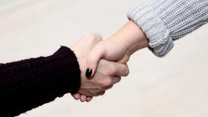Handskakning.