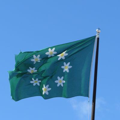 Raseborgs flagga är naggad i kanten