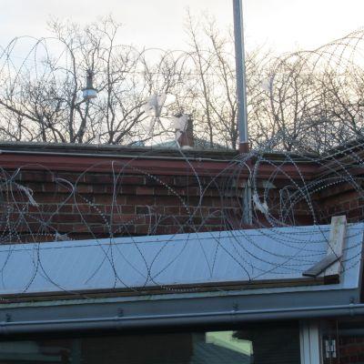 Taggtråd på fängelsemuren.