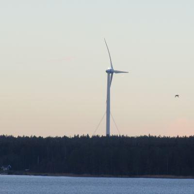 Merventos vindkraftverk i Vasa.