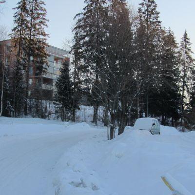 Våningshus i Sjundeå centrum