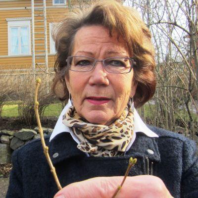 Mervi Backman