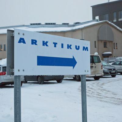 Arktikumin kyltti.