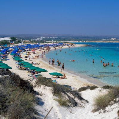 Strand i Cypern.