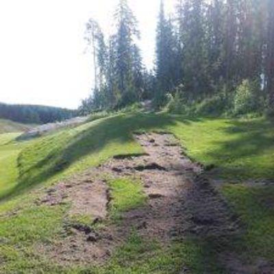 Golfkentän nurmea, josta on kaivettu paloja pois.