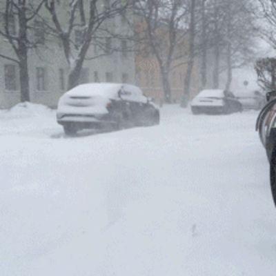 lapset kävelevät lumipyryssä