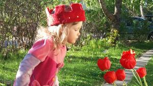 Freja Colerus tittar på röda tulpaner.