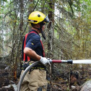 Brandman släcker eld i en skog