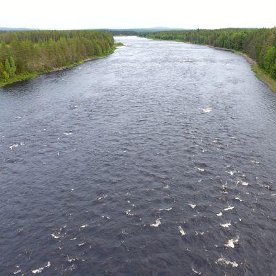 Ounasjoen Marraskoski 24.8.2017