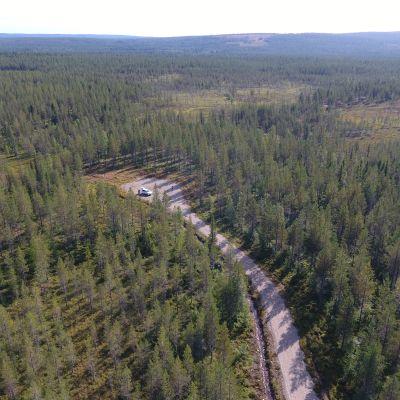 Valtion metsää Posion Susivaaralta Pudasjärven suuntaan.  Koko tämä maisema hakattiin puuttomaksi sotien jälkeisinä vuosikymmeninä. Posio 27.8.2019.