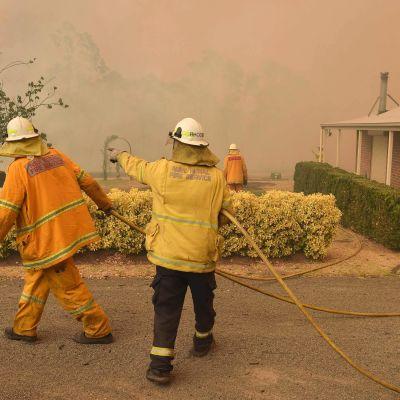 Palomiehet yrittivät taltuttaa tulipaloa Balmoralissa Australiassa 19. joulukuuta.