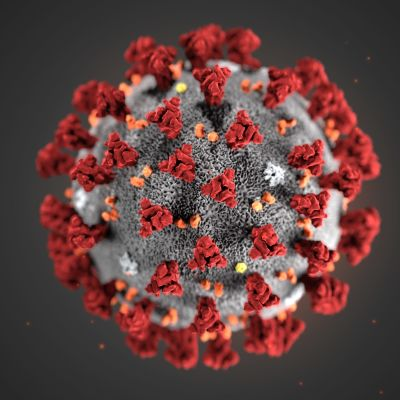 Havainnekuva koronaviruksesta.