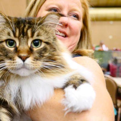 Dokumentti kissojen ja ihmisen suhteesta.