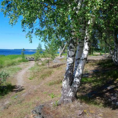 Halkokarin vanhaa uimarantaa Kokkolassa.