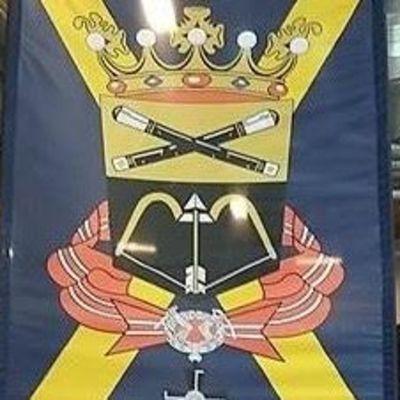 Mikkelin kaupunki ei myöntänyt vaakunan käyttöön lupaa.