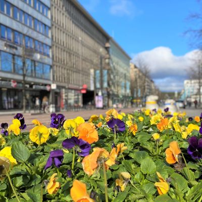Blomrabatter vid gågata i centrum av Lahtis.