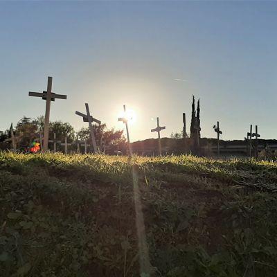 Kors på en kulle som badar i sol.