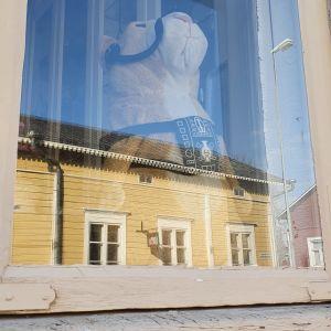 En nalle i ett fönster i Kristinestad.