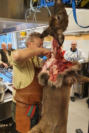 Torsten Mörner flår en vitsvanshjort i utbildningssyfte.