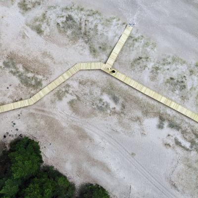 Flygbild av de spångar som Forststyrelsen byggt på Tulluddstrandens Natura-område.
