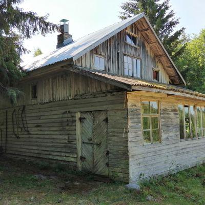 Alkuperäisenä säilynyt Poikolan tila Kolilla Lieksassa on arvokas esimerkki aikansa pientilarakentamisesta.