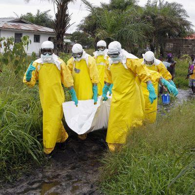 24 misstänkta fall av ebola har påträffats i Kongo-Kinshasa, 23 på landsbygden och ett fall i storstaden Mbandaka. Bilden är från Liberia år 2014