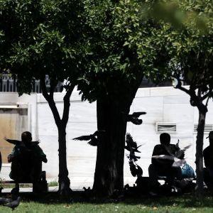 Människor sitter och svalkar sig under träd i centrala Aten den 1 juli 2017.