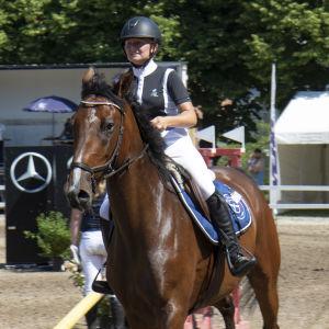 En häst med ryttare stegar sakta framåt.
